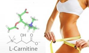 l-karnitin-otslabvane